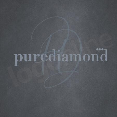 logo semplice con testo e sigla
